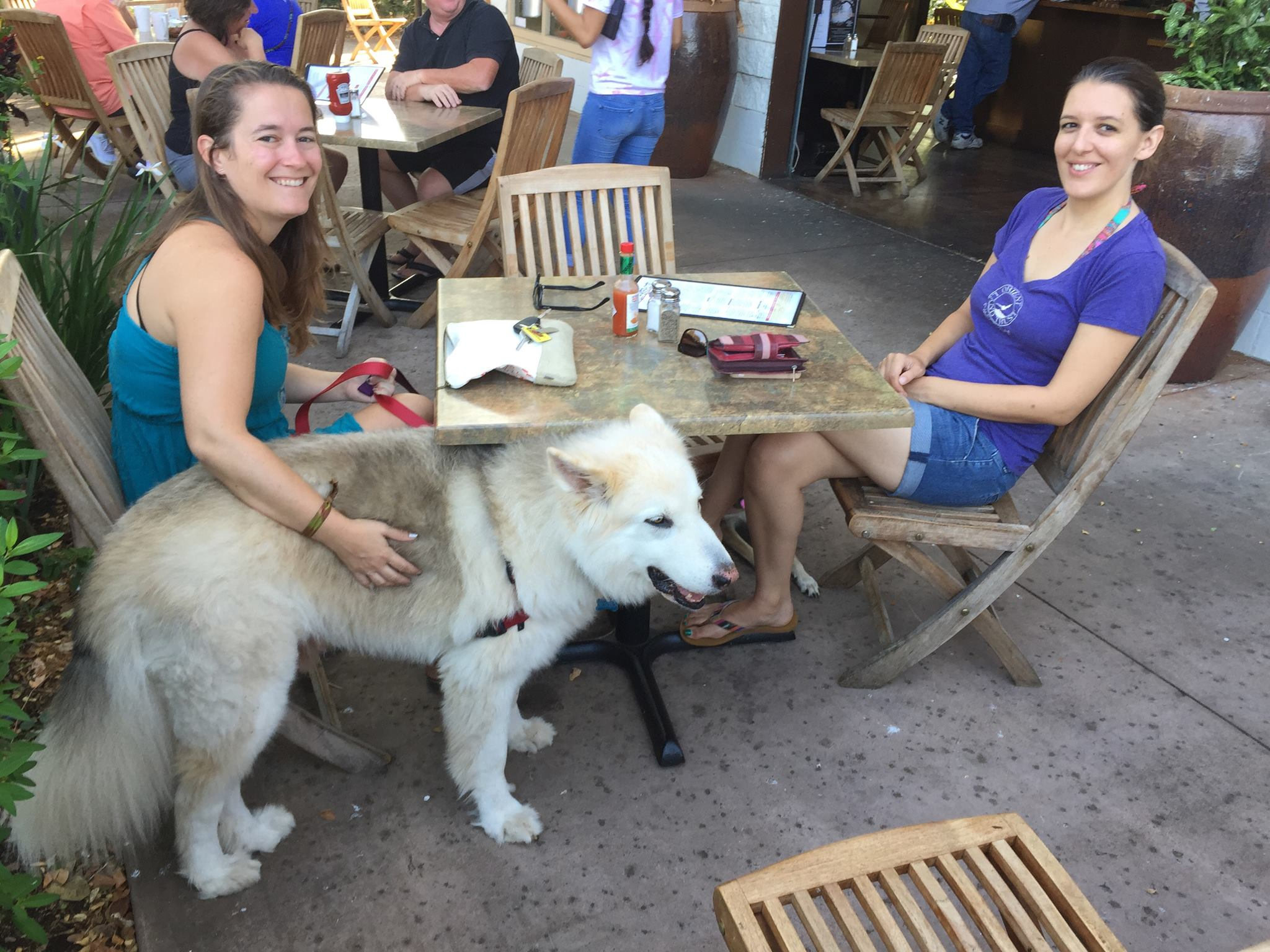 Waikoloa Village resident, Sara Jane, frequently brings her two dogs to Island Lava Java.