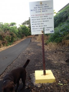 Walua Road Trail Rules