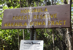 Honualua Forest Reserve