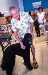 New customer with Dogtown Dogs owner, Brigette's Standard Poodle, Séamus, inside the Downtown Dogs salon. Brigette is in the background with the customer's groomed Poodles.