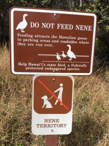 Volcanoes NP No Dogs sign 2.19.17